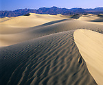 Death Valley National Park, CA<br /> Rippled dune form on the Mesquite Flats Sand Dunes near Stove Pipe Wells -<br /> Grapevine Mountains in the distance