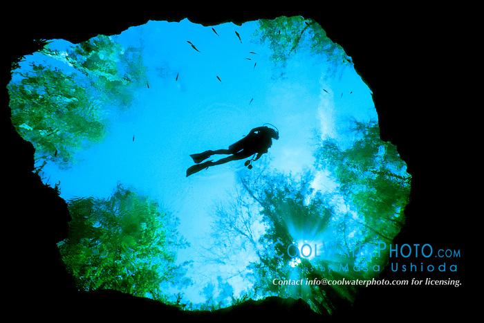scuba diver, Devils Eye Spring, .Ginnie Springs, High Springs, Florida