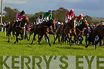 Action from the Ballylongford races last Sunday afternoon