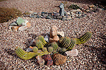 Art intermingled with a cactus in a front yard in Sun City, Arizona December 10, 2010.