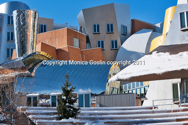 The colorful and unique buildings by architect Frank Gehry at MIT, Massachusetts Institute of Technology, in Boston with snow