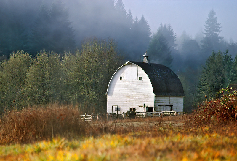Barn and fog. Near Corvallis, Oregon.