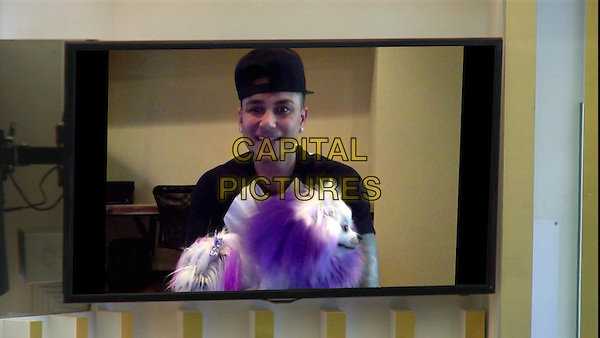 Celebrity Big Brother, Summer 2016, Day 21<br /> Pauly D<br /> *Editorial Use Only*<br /> CAP/KFS<br /> Image supplied by Capital Pictures