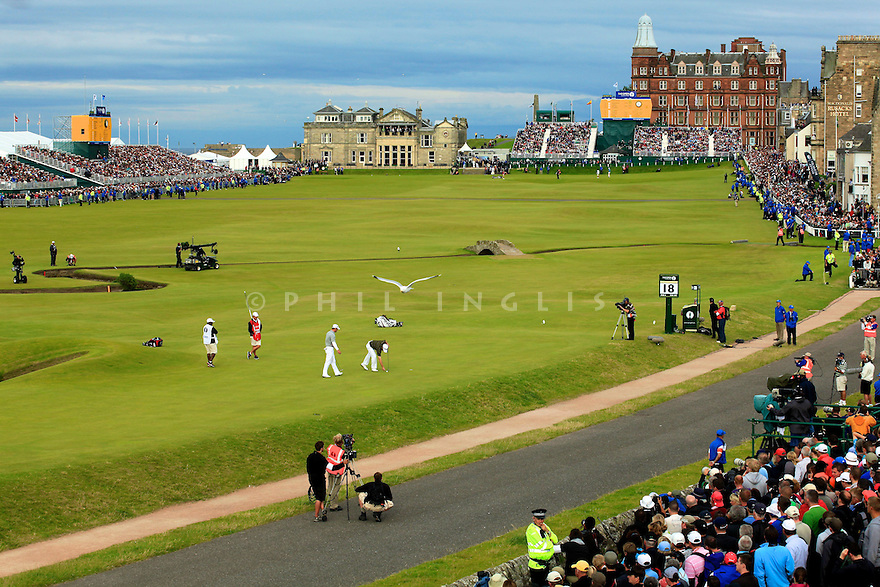 A seagull flies over the 17th green during the final round of the 139th Open Championship, Old Course, St. Andrews, Fife, Scotland.     Picture Credit / Phil Inglis...