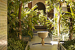 A courtyard with a fountain and trees in the Bahia Palace in Marrakesh, Morocco.