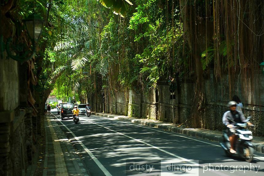 walking down towards the famous Murni's Café. Ubud, Bali