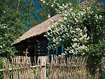 Wygiezłów, 14-10-2017 (woj. małopolskie) Nadwiślański Park Etnograficzny. Fragment chałupy ze wsi Podolsze z 1862 roku