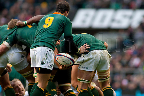 TWICKENHAM LONDON, 27-11-2010. South Africa's Deon Stegmann,  with a heavily strapped up leg passes the ball to South Africa's Ruan Pienaar,  during the Investec International match between England and South Africa at Twickenham Stadium Middlesex England.