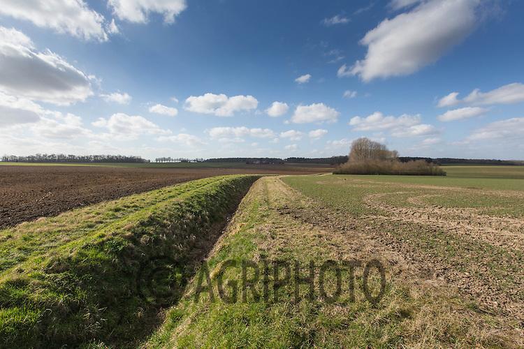 Agricultural landscape in Lincolnshire<br /> Picture Tim Scrivener 07850 303986<br /> <br /> Lincolnshire Arable Agricultural Landscape Tree Field Big Wide