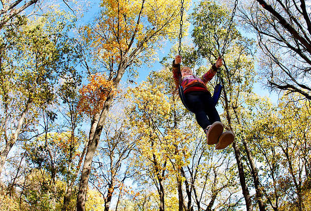 Alexa Weber, 5, of Waukee swings under fall foliage at Greenbelt Park in Clive.  She and her grandmother, Charlotte Schmidt of Clive were there to take in the fall colors.