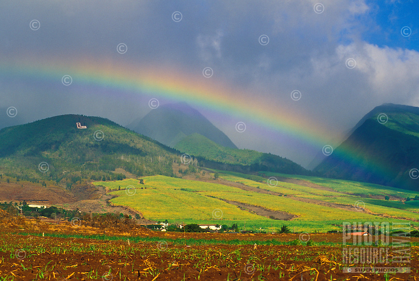 "A rainbow over the West Maui Mountains above Lahaina Town and newly planted sugarcane. The Lahaina sugar industry and mill shut down operations about the year 2000. Above the fields, the white ""L"" on the mountain stands for Lahainaluna High School."