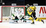 Stockholm 2014-11-16 Ishockey Hockeyallsvenskan AIK - IF Bj&ouml;rkl&ouml;ven :  <br /> Bj&ouml;rkl&ouml;vens m&aring;lvakt Johan Mattsson r&auml;ddar en straff av AIK:s Robin Kovacs under straffl&auml;ggningen efter f&ouml;rl&auml;ngningen av matchen mellan AIK och IF Bj&ouml;rkl&ouml;ven <br /> (Foto: Kenta J&ouml;nsson) Nyckelord:  AIK Gnaget Hockeyallsvenskan Allsvenskan Hovet Johanneshov Isstadion Bj&ouml;rkl&ouml;ven L&ouml;ven IFB