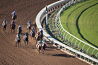 DEL MAR, CA - NOVEMBER 04: The field of the Sentient Jet Breeders' Cup Juvenile make the last turn on Day 2 of the 2017 Breeders' Cup World Championships at Del Mar Thoroughbred Club on November 4, 2017 in Del Mar, California. (Photo by Ting Shen/Eclipse Sportswire/Breeders Cup)