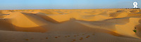 Tunisia, Ksar Ghilane, Sahara Desert at sunset (Licence this image exclusively with Getty: http://www.gettyimages.com/detail/sb10065474cb-001 )