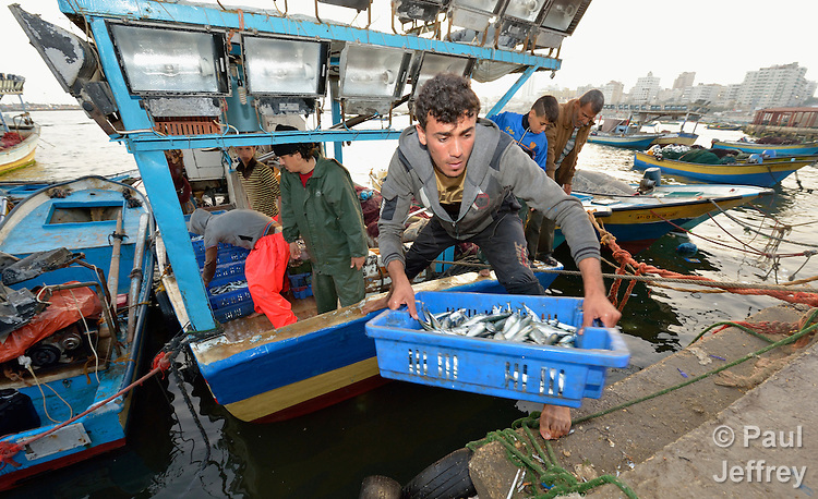 Fishers unload their catch early in the morning in the harbor of Gaza City, Gaza. The Israeli military prevents fishers from venturing more than six nautical miles out to sea--and often times even less--preventing them from catching the fish the Palestinian territory needs.