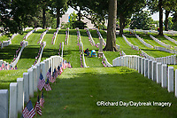 65095-01816 Flags on Memorial Day at Jefferson Barracks National Cemetery, St Louis, MO