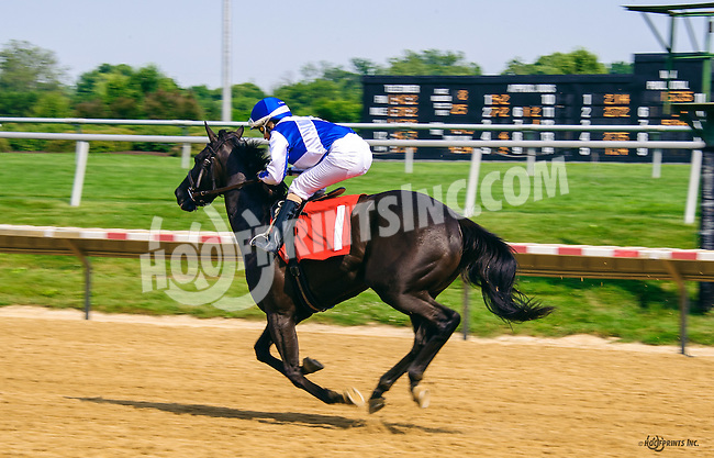 Foray winning at Delaware Park on 6/20/16
