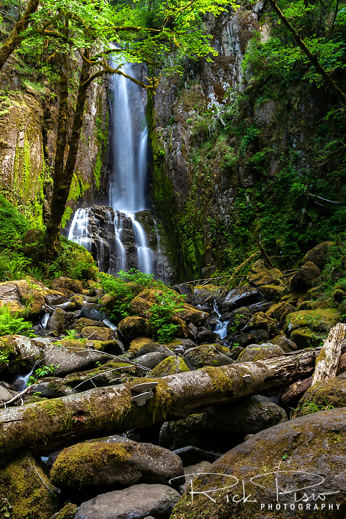 Lower Kentucky Falls in Oregon's Suislaw National Forest near the town of Mapleton.