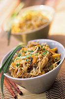 """Asie/Thaïlande/Env de Chiang Mai : Phad Thai nouilles sautées avec tofu, omelette, soja et crevettes séchées - Recette de la """"Suan Bua Thani Resort"""""""