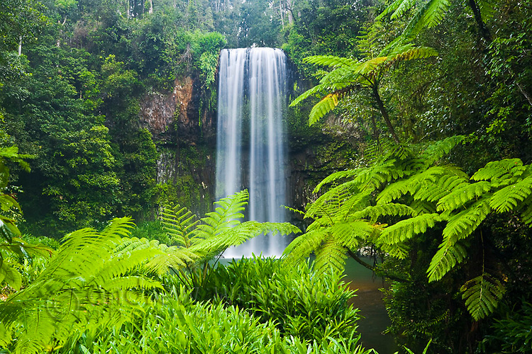 Millaa Millaa Falls on the Atherton Tablelands near Cairns, Queensland, Australia