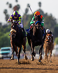 JAN 05: Storie Bblue with Drayden Van Dyke defeats Classy Ruler with Mike Smith to break her maiden at Santa Anita Park in Arcadia, California on January 01, 2020. Evers/Eclipse Sportswire/CSM