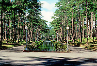 Philippines: Baguio--a tree-lined street with center pond.