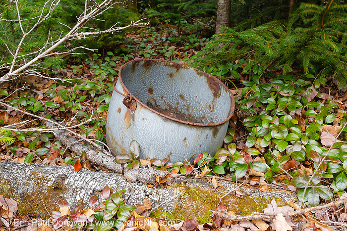 Remnants of logging Camp 3 along the abandoned Beebe River Railroad (1917-1942) in the Beebe River drainage of Sandwich, New Hampshire. This item is an artifact of the New Hampshire logging era, and the removal of historical artifacts from federal lands without a permit is a violation of federal law.