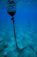 Buoy and its chain underwater, Marseille, France.