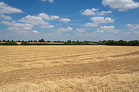 Harvested field<br /> &copy;Tim Scrivener Photographer 07850 303986<br />      ....Covering Agriculture In The UK....