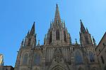 Diada Nacional 2017.<br /> Catedral de Barcelona.