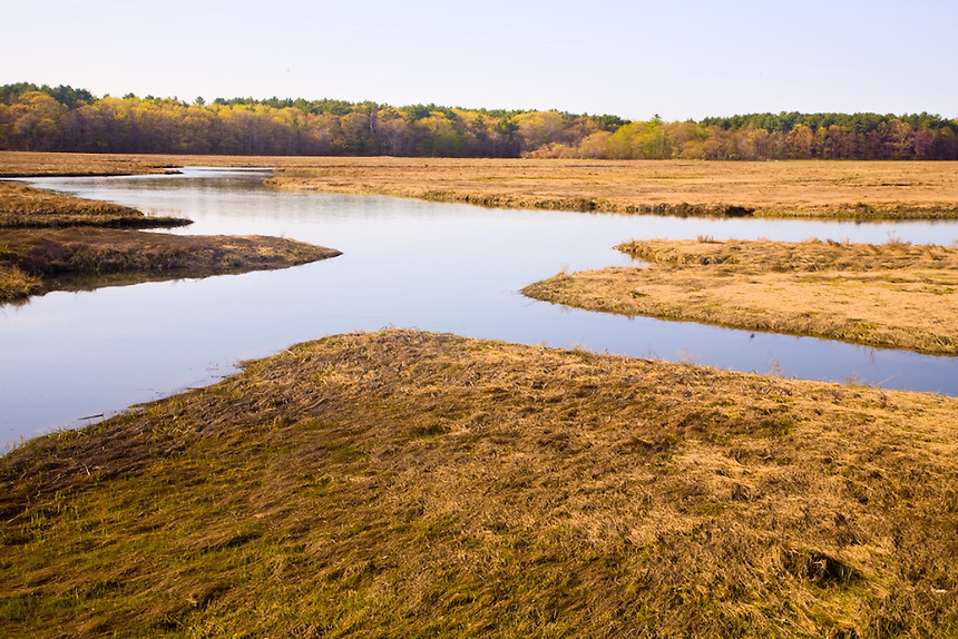Aucomin  Marsh, Rye Harbor, New Hampshire. Photograph by Peter E. Randall.