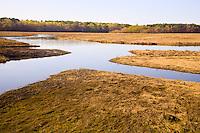 Aucomin  Marsh, Rye Harbor, New Hampshire. Photograph by Peter E. Randall.