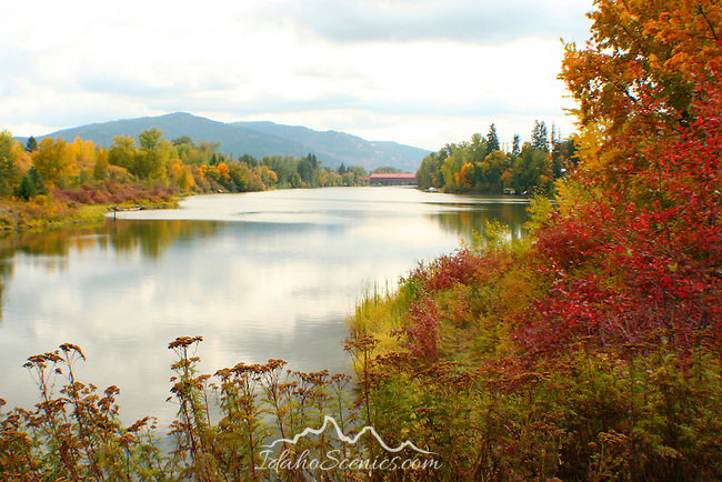 Fall colors along Little Sand Creek outlet into Lake Pend Oreille with the cedar street bridge in the distance.