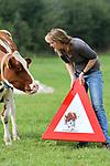 """Foto: VidiPhoto<br /> <br /> LAREN (GLD) – Boerin en kunstenares Tine van Houselt op een archieffoto met het verkeersbord van Wendy19 dat deze week gestolen is bij de koe-oversteekplaats aan de Dochterenseweg in het Gelderse Laren. De waarschuwingsborden met de afbeeldingen van 'haar' koeien zijn razend populair, ook bij de dieven, hoewel Tine vermoedt dat het koebord ditmaal geroofd is door dronken jongeren. """"Ik denk en hoop dat het een stel pubers zijn geweest die met een biertje te veel en in groepsverband besloten hebben om het bord mee te nemen voor in hun keet. Als ze het bord terugbrengen kunnen ze bij ons een biertje komen drinken en ik wil wel iets anders leuks voor ze schilderen voor in hun keet."""" Diverse melkveehouders hebben een 'koe-waarschuwingsbord' van Tine op hun erf hangen. Daar is het beter beveiligd dan langs de weg. Wendy19 was het meest favoriete koebord van de Larense boerin."""