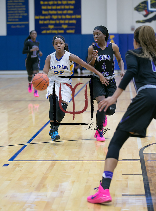 Pflugerville's Andrea Funderburke drives down the lane against Cedar Ridge.  The Panthers were defeated by a score of 64-39 at Panther Gym Friday.  (LOURDES M SHOAF for Round Rock Leader.)