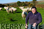 Sheep farmer Francis Foley Castlemaine who is appealing the dog owners not leave their dogs loose during lambing season