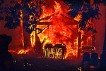 August 19, 1992 Angels Camp, California -- Old Gulch Fire— House completely engulfed in flame in Northwood Estates near Forest Meadows. The Old Gulch Fire raged over some 18,000 acres, destroying 42 homes while threatening the Mother Lode communities of Murphys, Sheep Ranch, Avery and Forest Meadows.