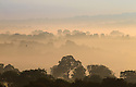 20/09/15<br /> <br /> Making a stunning, picture-postcard, early autumn scene, early morning mists cling to farmland in The Derbyshire Dales near Thorpe in the Peak District.<br /> <br /> All Rights Reserved: F Stop Press Ltd. +44(0)1335 418365   www.fstoppress.com.