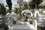 A Palestinian boy visits the graves of relatives ahead of  Eid al-Adha in the West Bank city of Nablus ,November 13, 2010. Muslims worldwide are preparing for Eid al-Adha, or Feast of the Sacrifice, commemorating God's provision of a ram to substitute for Abraham's impending sacrifice of his son, where able Muslims offer either a goat, sheep, cow, buffalo, or camel during the feast rituals. Palestinians put palm branches on the graves of their relatives during Eid al-Adha as part of a local custom. Photo by Wagdi Eshtayah