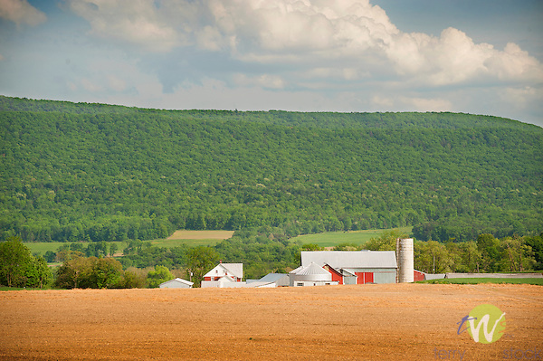Farmscape in June. Center County, PA.