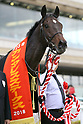 Horse Racing: Antares Stakes at Hanshin Racecourse