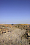 Israel, Coastal Plain, Nahal Sud in the Negev Coastal Plain