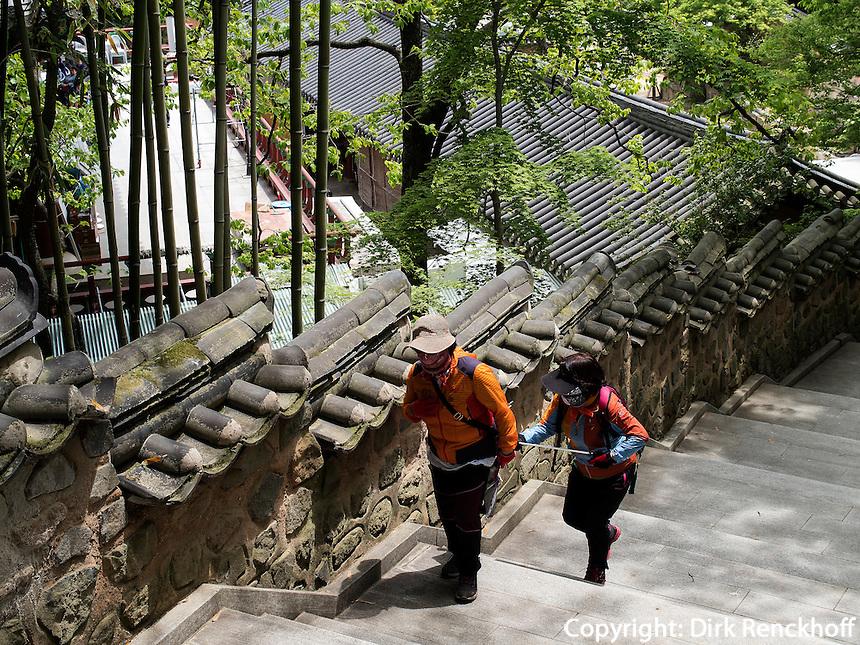 Bambus, buddhistischer Beomosa Tempel bei Busan, Gyeongsangnam-do, S&uuml;dkorea, Asien<br /> bamboo, buddhist temple Beomosa near Busan,  province Gyeongsangnam-do, South Korea, Asia