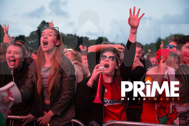 Wales fans celebrate their side's third goal at the Cardiff Fanzone during the Euro 2016 quarter final between Wales and Belgium , Cardiff, Wales on 1 July 2016. Photo by Mark  Hawkins/PRiME Media Images.