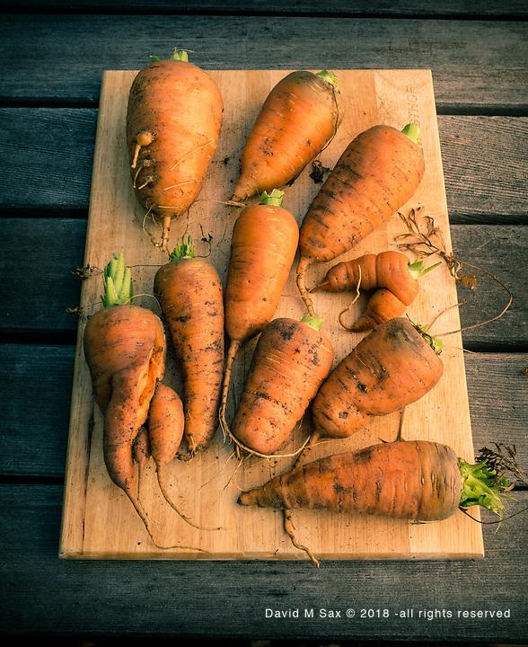 8.4.17 - D.W.'s Carrots...