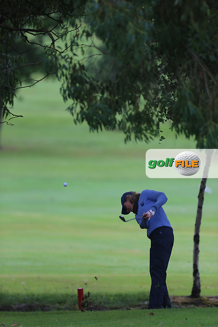 Hilary McHenry (Mahee Island) during the Ulster Mixed Foursomes Final, Shandon Park Golf Club, Belfast. 19/08/2016<br /> <br /> Picture Jenny Matthews / Golffile.ie<br /> <br /> All photo usage must carry mandatory copyright credit (&copy; Golffile   Jenny Matthews)