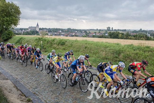 Peloton up the cobbles of Kautershof in Hoegaarden<br /> <br /> 2nd Dwars door het Hageland 2017 (UCI 1.1)<br /> Aarschot &gt; Diest : 193km