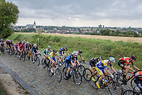 Peloton up the cobbles of Kautershof in Hoegaarden<br /> <br /> 2nd Dwars door het Hageland 2017 (UCI 1.1)<br /> Aarschot &gt; Diest : 193km