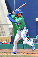 Brendan Rodgers (1) of the Hartford Yard Goats bats during a game against the New Hampshire Fisher Cats at Dunkin Donuts Park on April 8, 2018 in Hartford, Connecticut.<br /> (Gregory Vasil/Four Seam Images)
