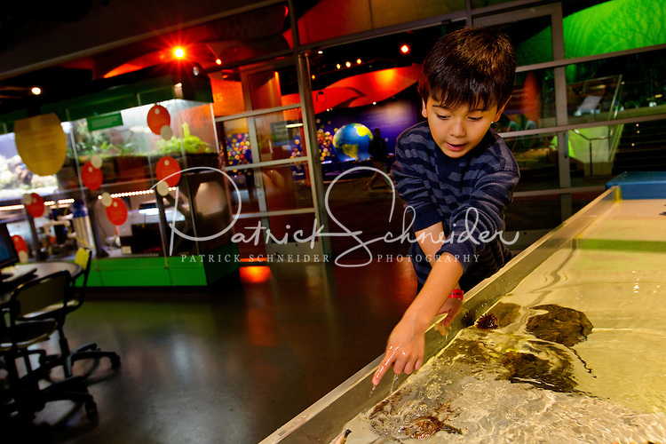 "Charlotte, NC on-location photography of Discovery Place, Charlotte's hands-on science museum located in downtown Charlotte NC. In this image, children explore and play in the ""Explore More Life"" lab, where visitors can engage in real-world science, design and conduct experiments and experience aquatic life."